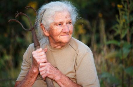 Revisão da Vida Toda pode aumentar a aposentadoria dos assegurados